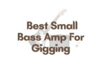 Best Small Bass Amp For Gigging